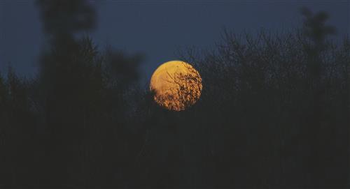 Luna de Maíz: ¿Qué es y cuándo podrás verla?